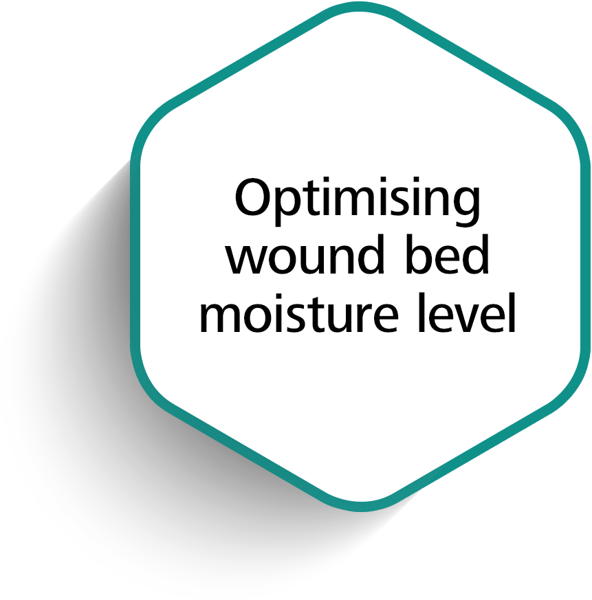 Optimizing wound bed moisture level